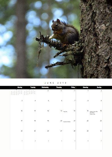 2019-bc-calendar-preview-06-june.jpg
