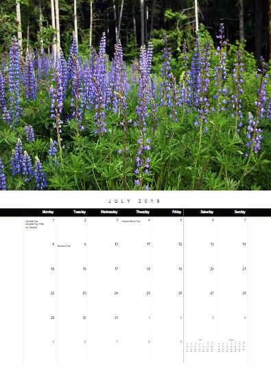 2019-bc-calendar-preview-07-july.jpg