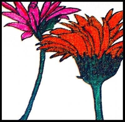 Gerbere daisies.jpg
