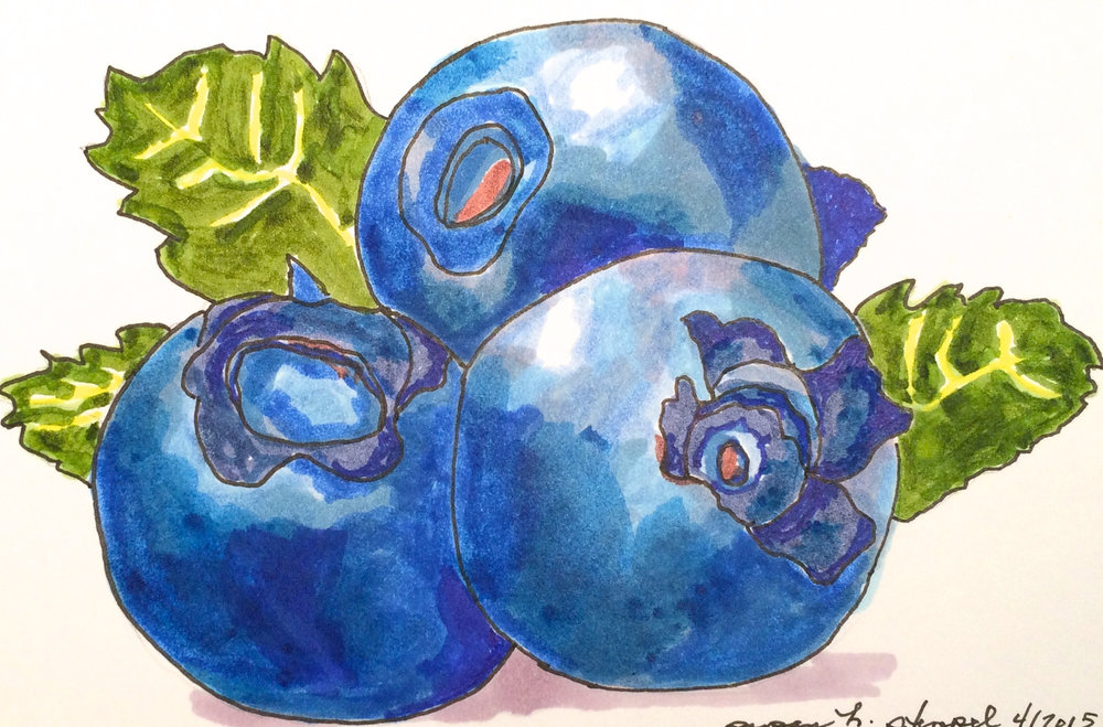 "SOLD.  ""5"" x 7"", pen & ink on paper.  ""Blue Blueberries"""