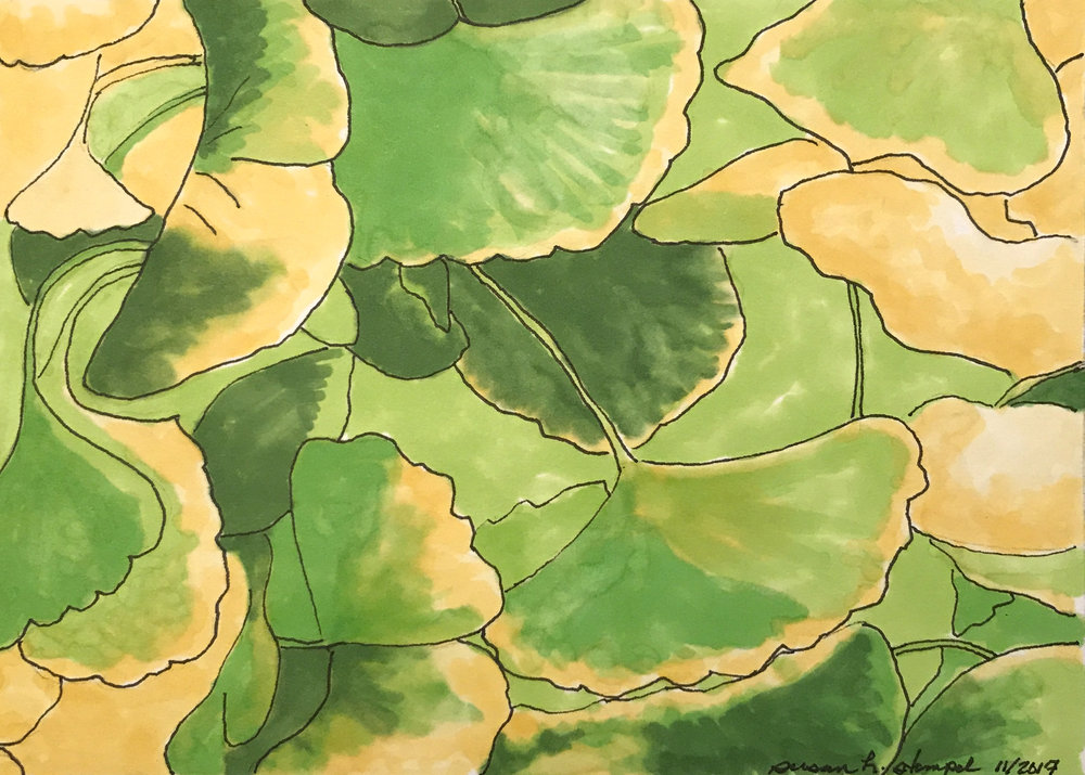 """$300.  """"5"""" x 7"""" pen & ink on paper. """"Gingko Leaves"""""""