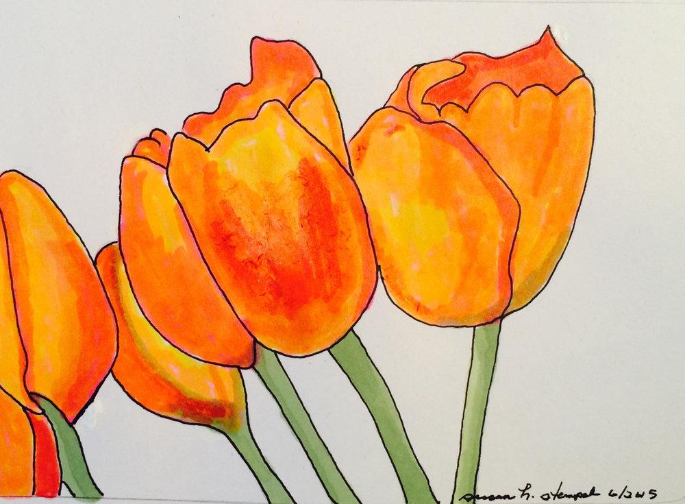 """$300.  5"""" x 7""""  pen & ink """"Tulips in Orange."""""""