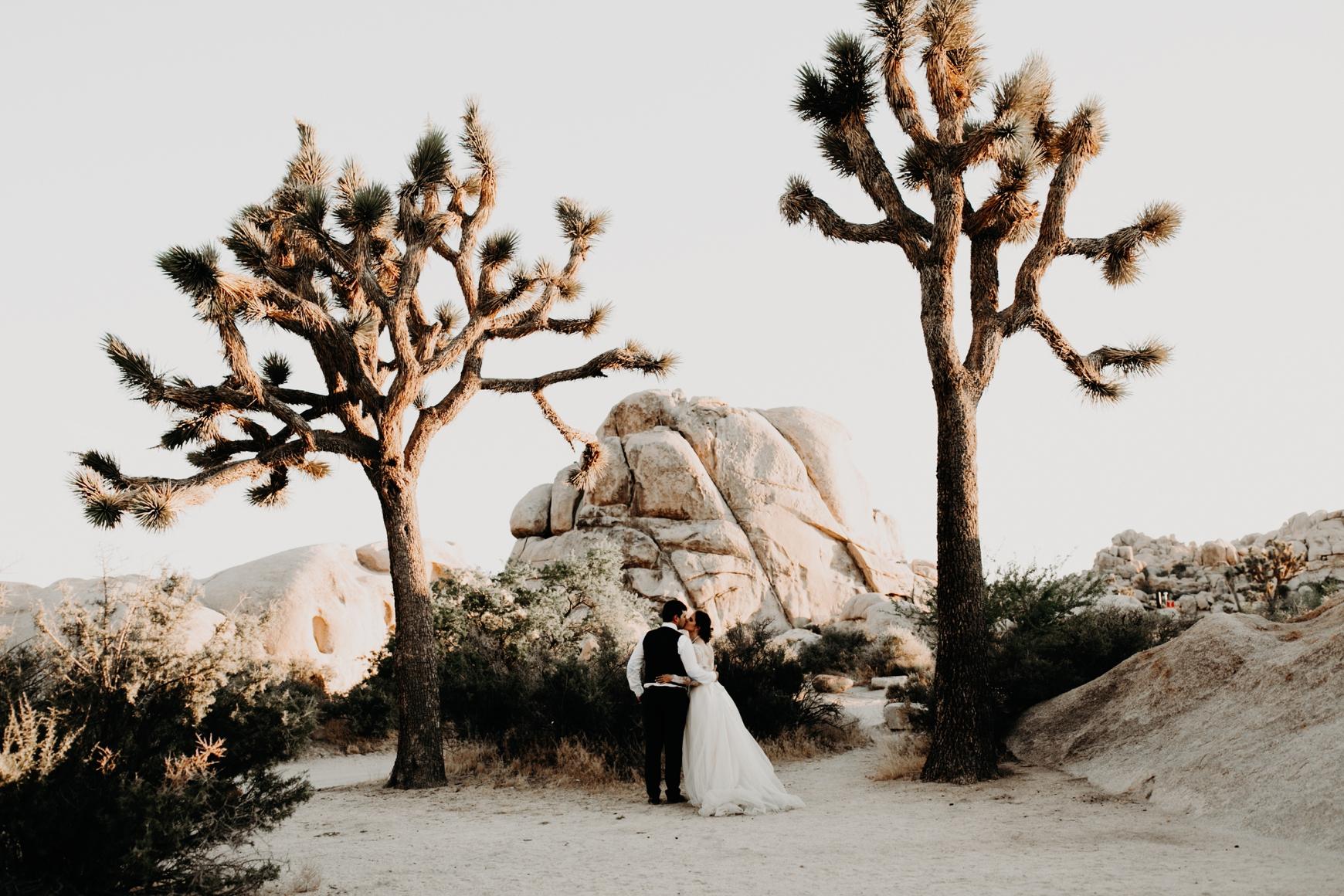 Joshua Tree Bridal Portraits Anastasia & Andrey Emily Magers Photography-294.jpg
