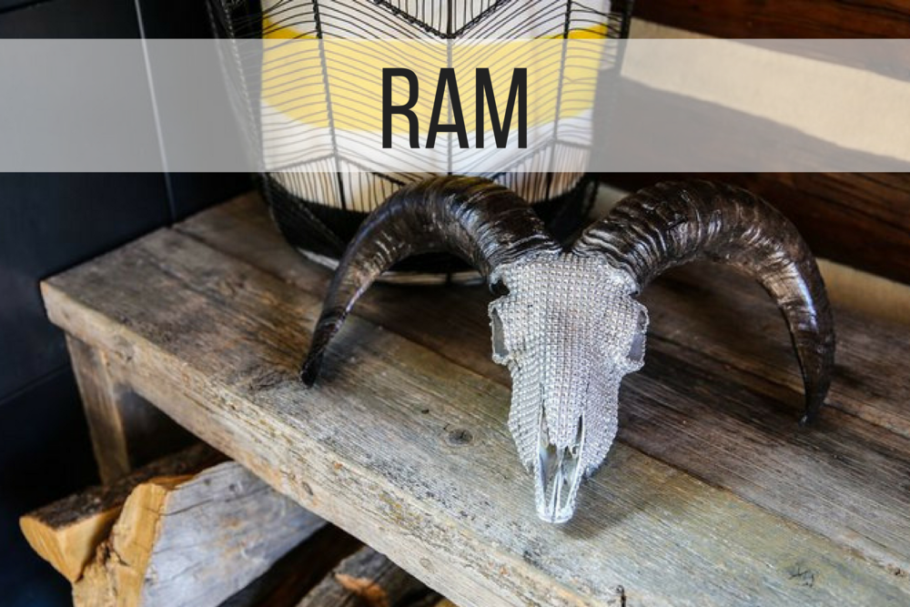 RAM (5).png