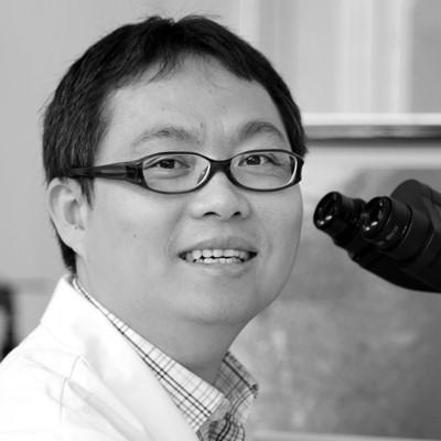 Dr Nai Yang Fu