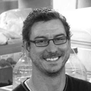 Dr Shane Thomas