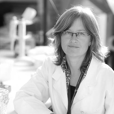 Dr Andrea Markus