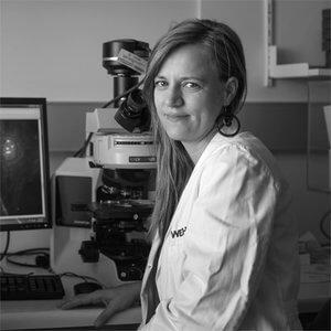 Dr Ana Janic