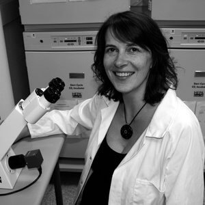 Dr Carolyn McNees