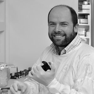 Dr Michael Hahn