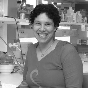 Dr Vanessa Bonazzi