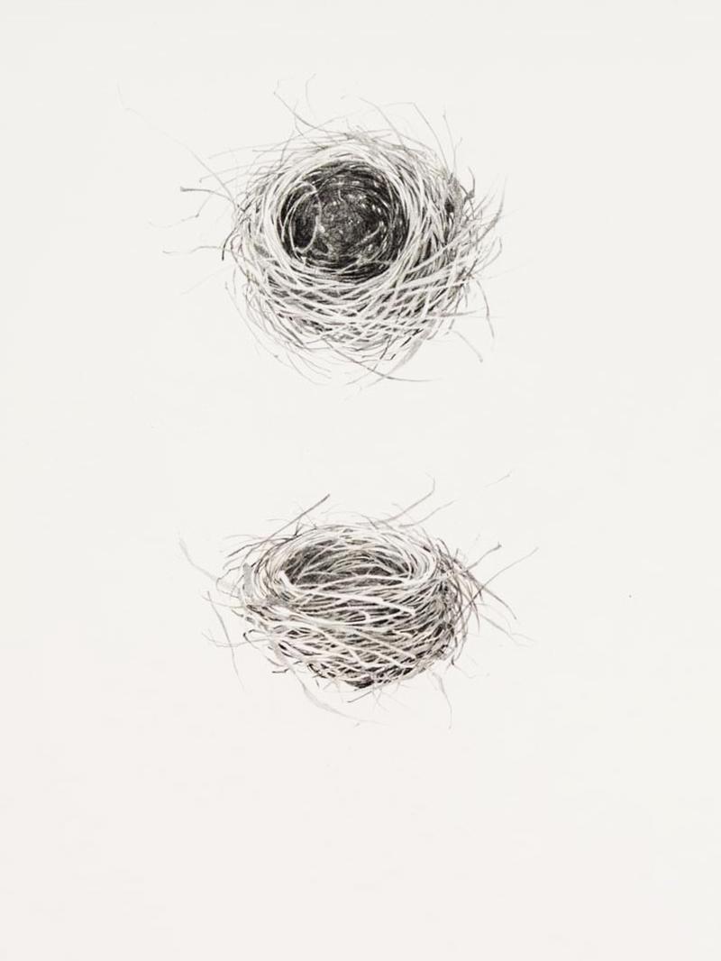 petty nests.jpg