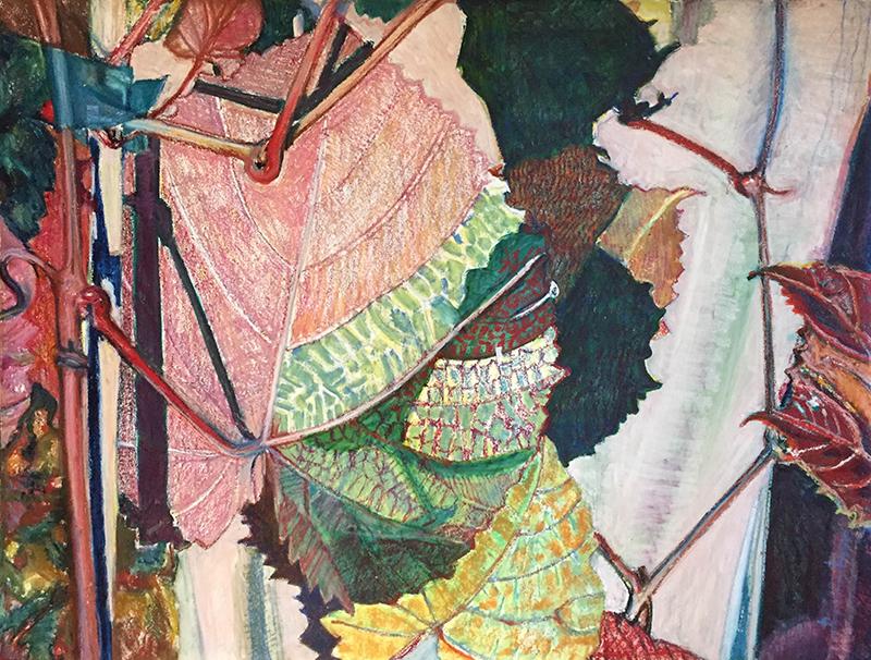 Pamela Zwehl-Burke, Vine, oil pastel, 38″x50″