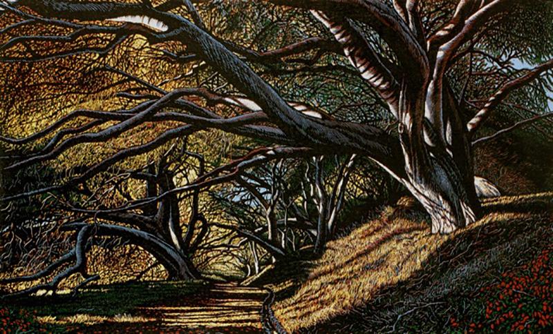 Leonardo Nuñez, Oak Tunnel, 9 color reductive linoleum cut, 19×31 in.