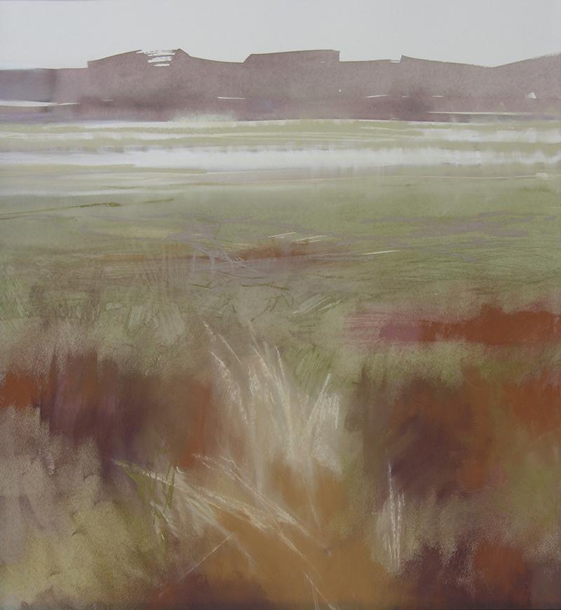 Salt Marsh (Red)