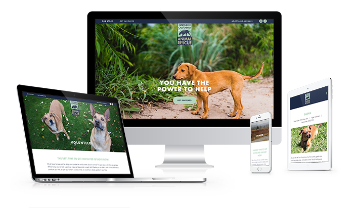 NorCalAnimalRescue_Website.jpg
