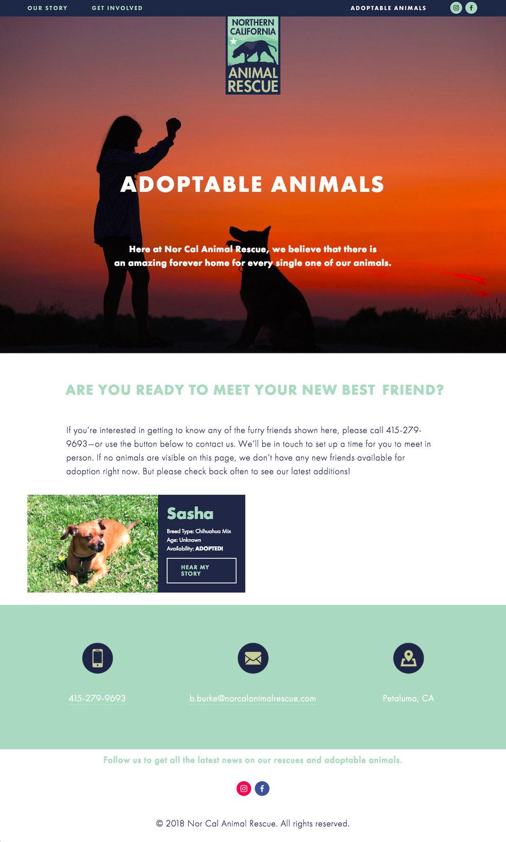 NCAR_Adopt.jpg