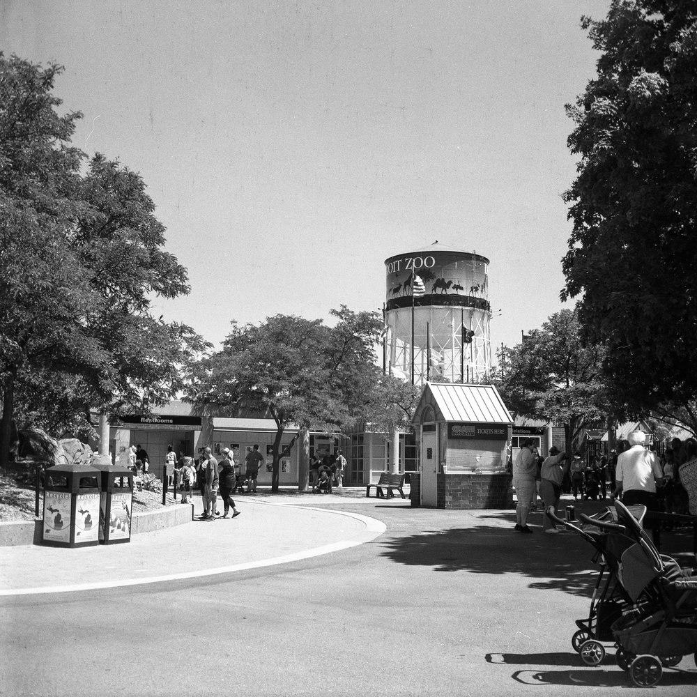 1949 Kodak Brownie Hawkeye Photo Medium Format 620 Film Zoe Kissel Photo detroit zoo