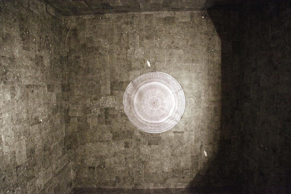 animum explorari ceiling.jpg