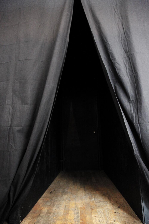 animum explorari curtains.jpg