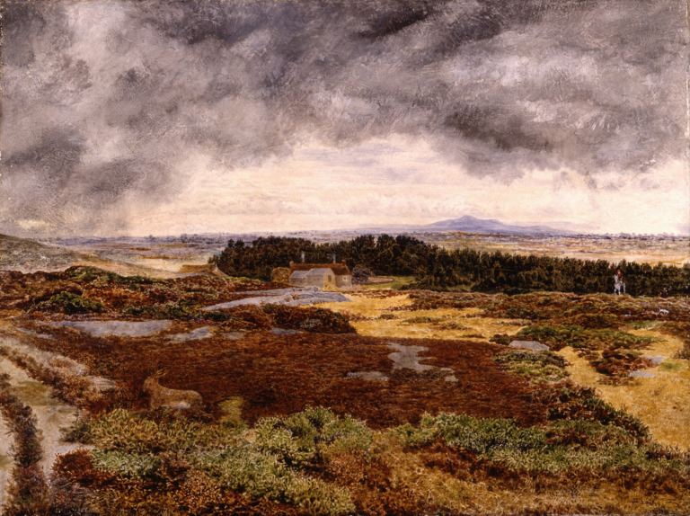 View from Bidston Hill. William Davis.