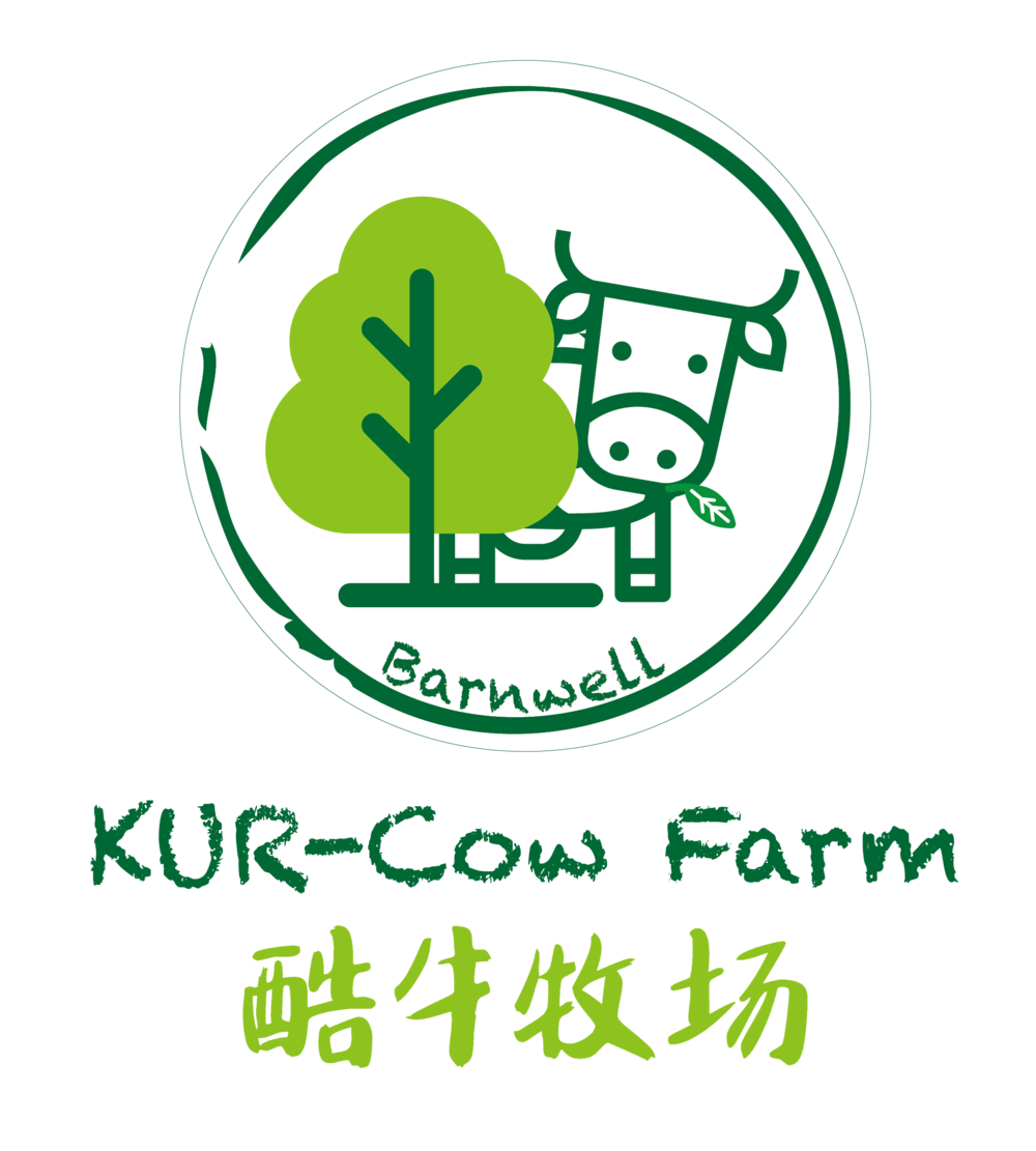 KUR-Cow Barnwell farm_画板 1.png