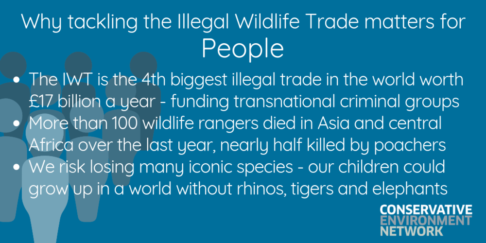 Why tackling the Illegal Wildlife Trade matters-6.png