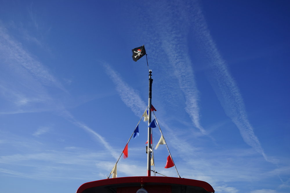 Exmouth Water taxi marina dawlish warren exe river boat trip starcross ferry