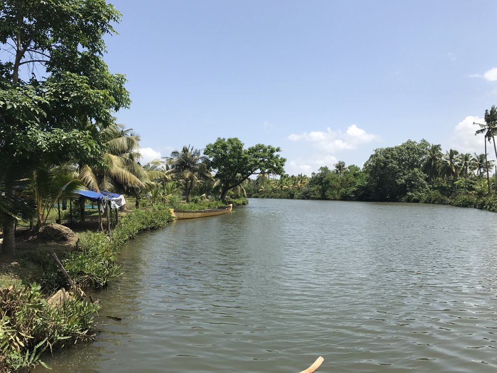 one of the many villages within the keralan backwaters
