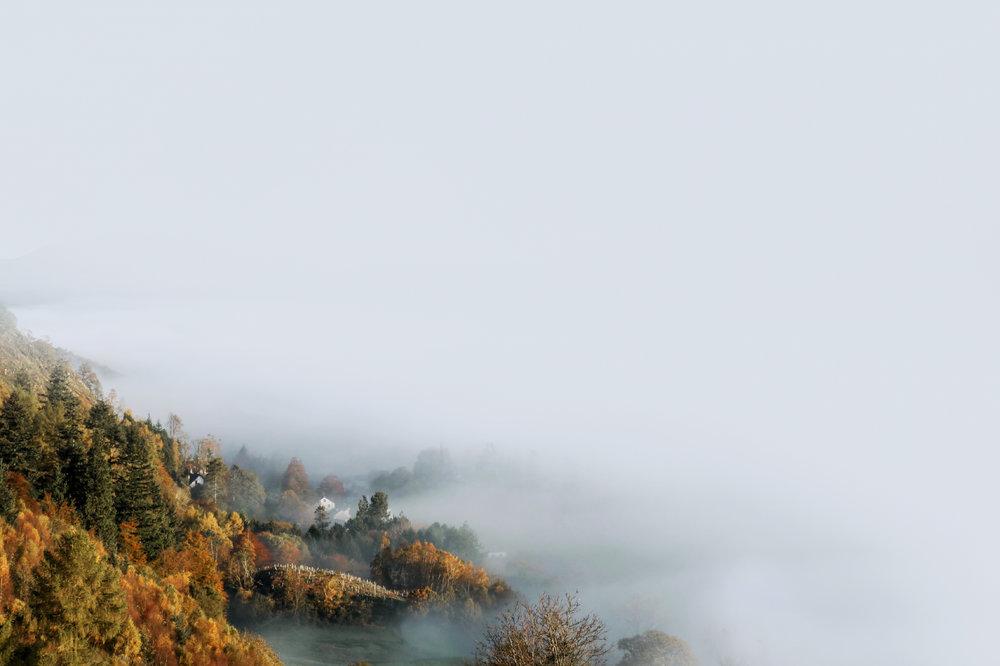 studio_landscapes_lo_8.jpg