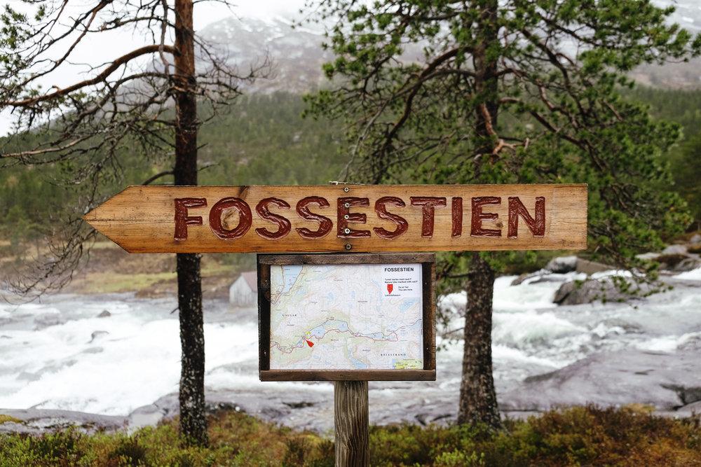 western_fjords_18.jpg