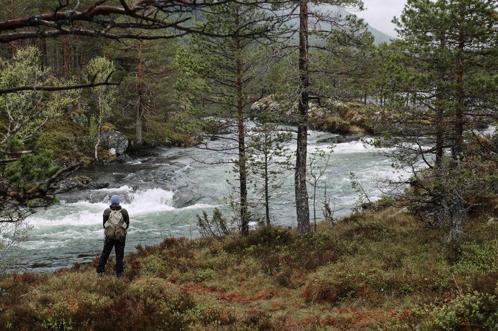 western_fjords_23.jpg