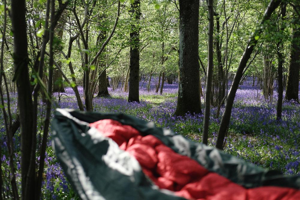 hammock_camping_4.jpg