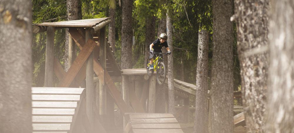 bannerbike.jpg