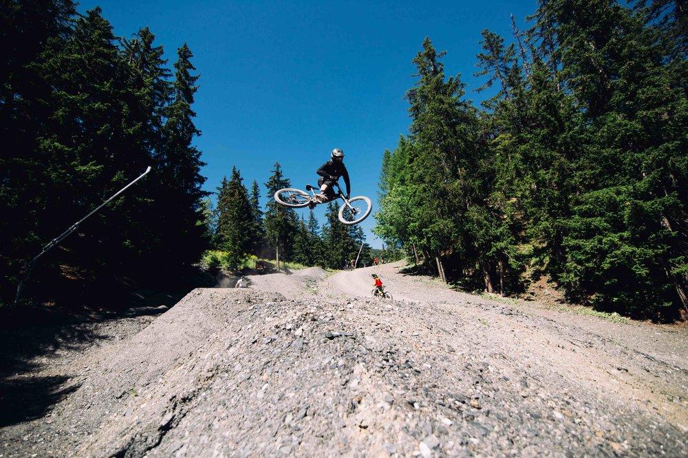 bikeweb-1-3.jpg