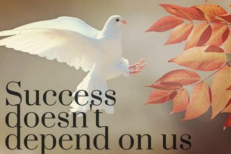success - blog.png