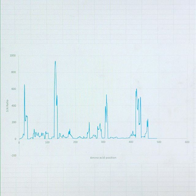 Students busy doing some signal to noise analysis to help them identify regions of #genes which are more likely to harbour disease causing #geneticvariants 😁 . . . . #science #artofscience #scienceart #labwork #laboratory #scientist #scientistsofinstagram #womeninstem #lablife #biology #genetics #sciencecommunication #lab #sciences #sciencegeek #scienceiscool #sciencenerd #raredisease