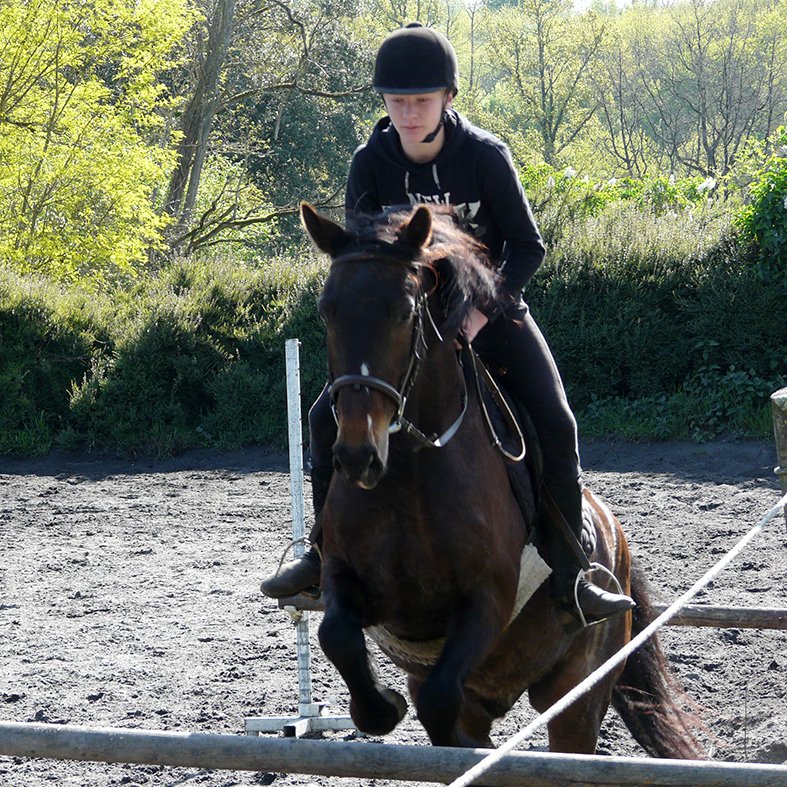 horse riding holidays with jumping in France