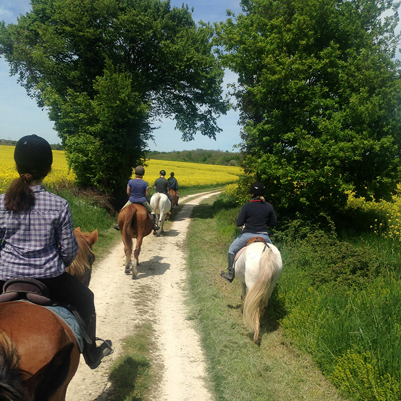 Reiturlaub in Frankreich, Ausreiten
