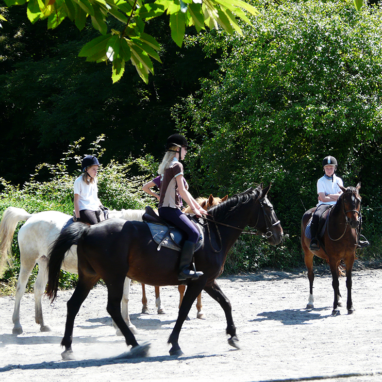 equestrian stay in France