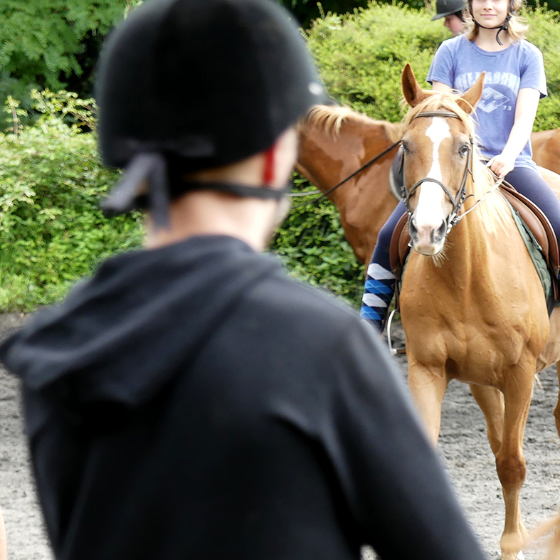 horse riding holidays with dressage in France