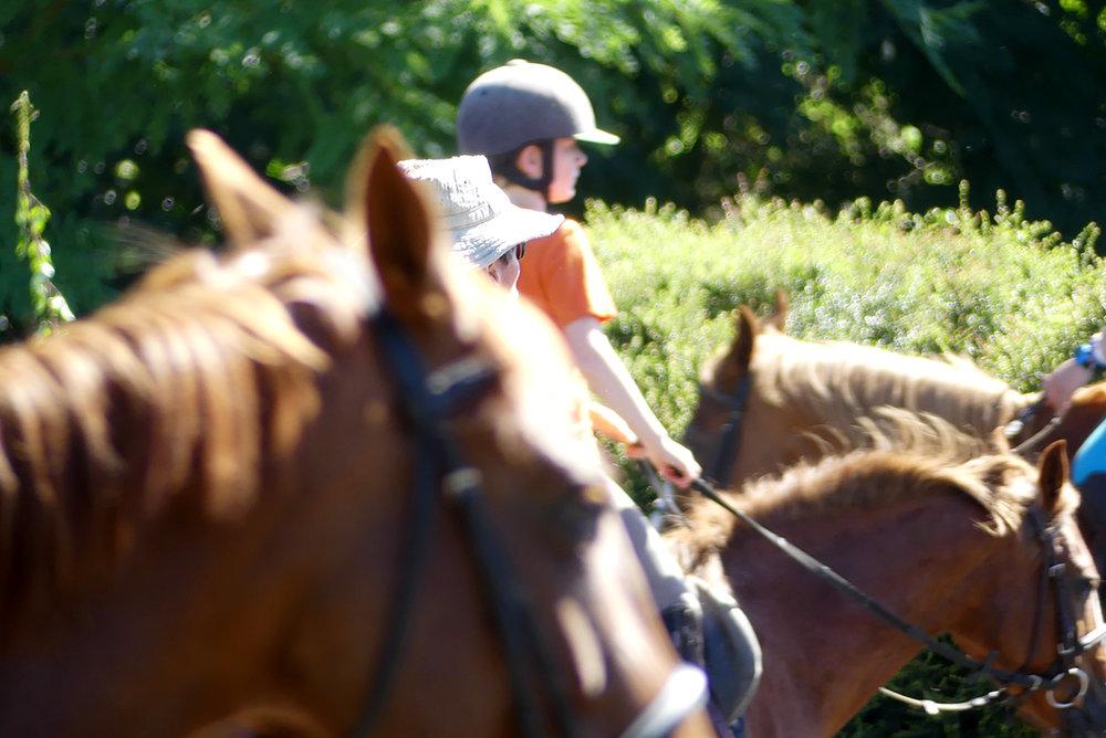 à la carte - Composer vos vacances selon l'envie de chacun. Avec ou sans hébergement, avec des forfaits d'équitation ou des leçons ponctuelles, en détente...