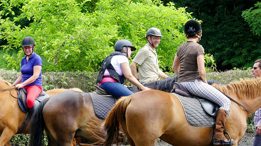 sejour-equestre-adultes.jpg