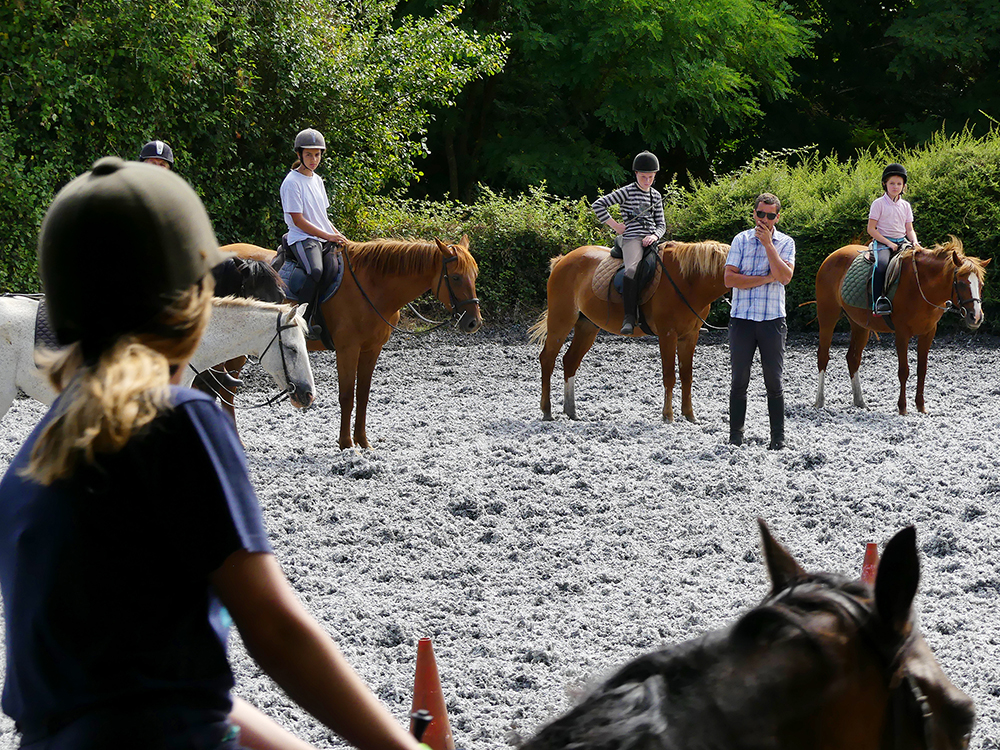 sejour-equestre-debutants.jpg