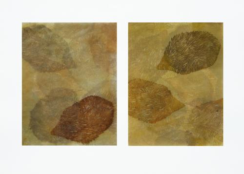 Melanie- Hedgehogs (relief)_Schick.JPG