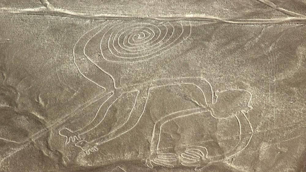 mono-nazca.jpg