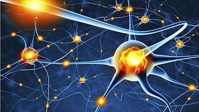 neuronas-muerte-cerebro-b-655x368.jpg