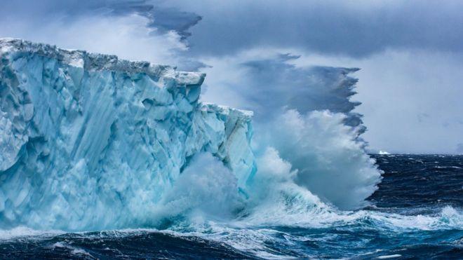 _103907187_antartic240.jpg