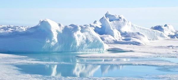 Ilustraciones-para-salvar-el-Ártico.jpg