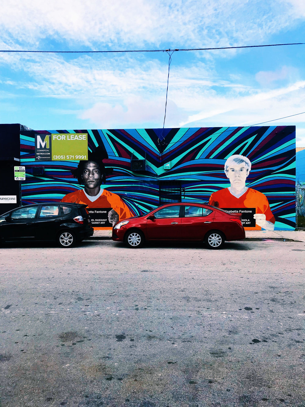 Artwork in Wynwood Arts District